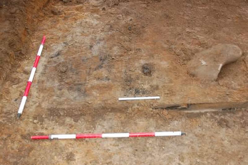 Hearth-like deposit in Trench 7 - 0.3 m scale indicates area of concentrated burnt bone